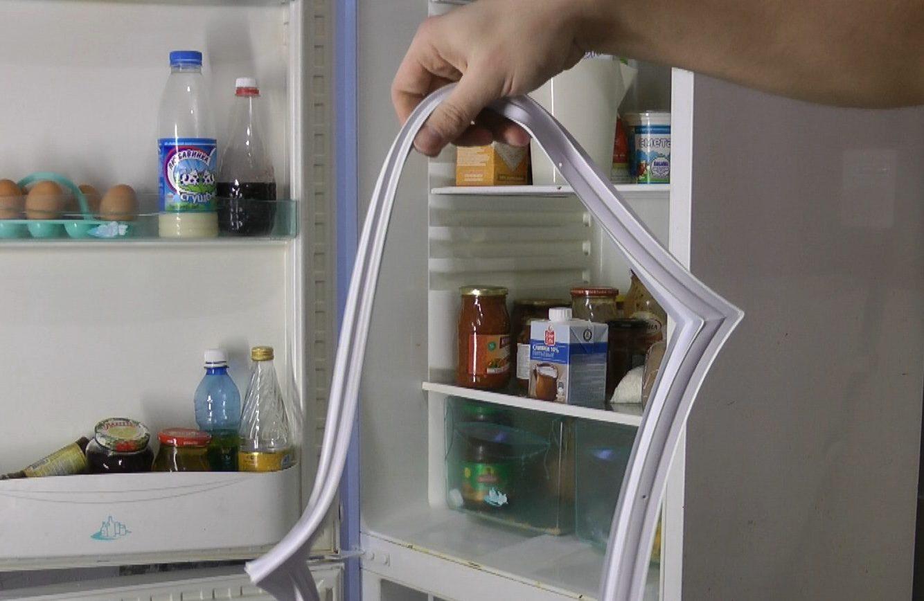 отмыть плесень на резинке в холодильнике