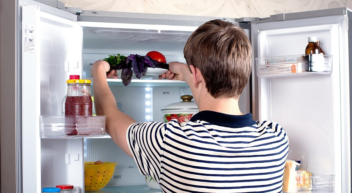 Подготовка холодильника перед очисткой