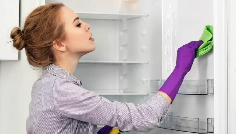 Пошаговая очистка холодильника